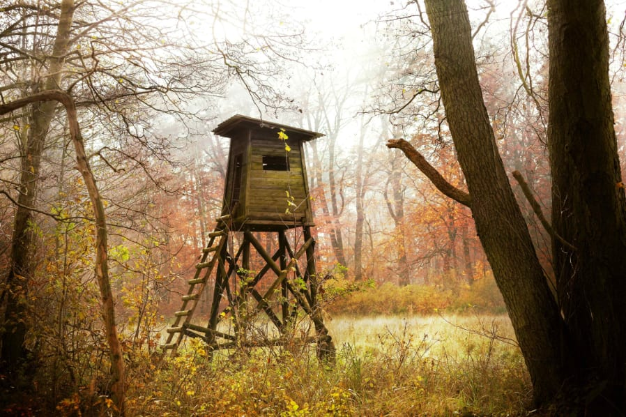 Blind in Wooded area History of Hunting Blinds Featured Image